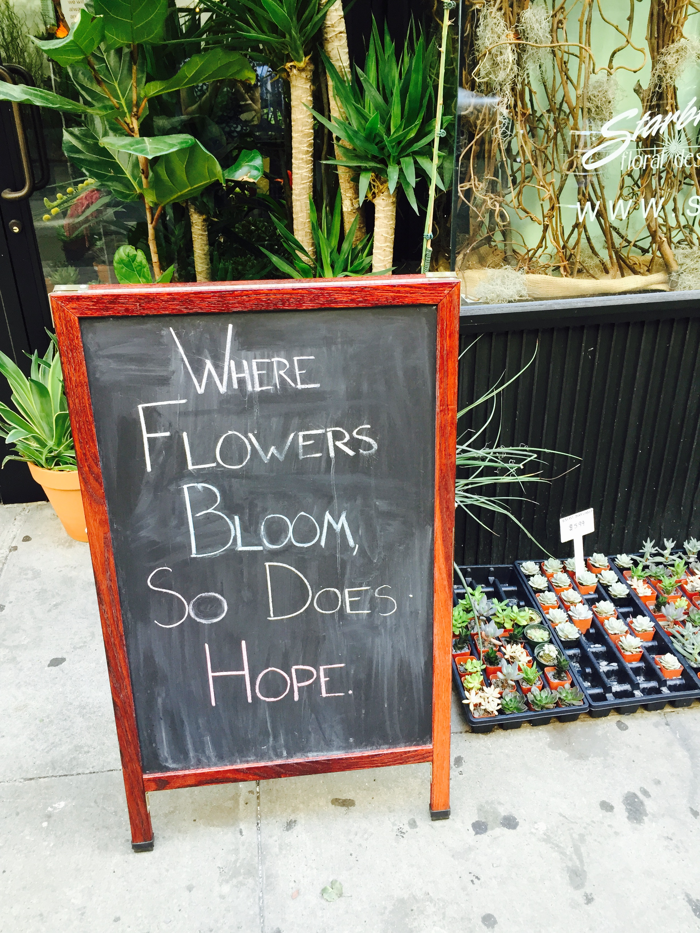 Were flowers bloom so does hope.
