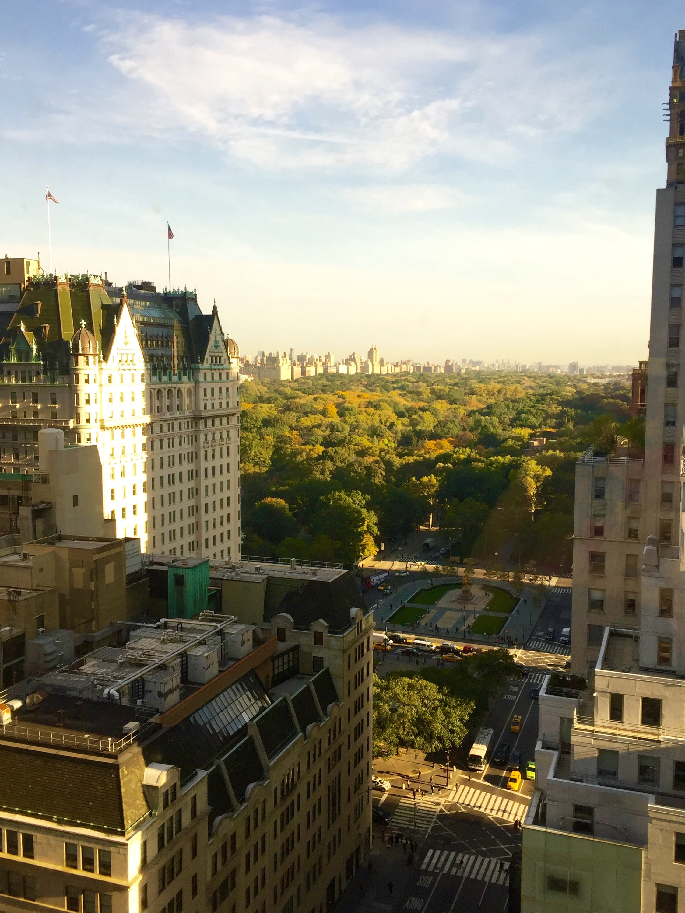 New York Art Director, Jessica Haas captures an aerial view of Central Park and The Plaza