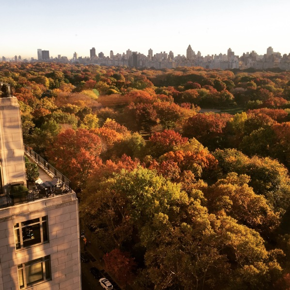 New York Art Director, Jessica Haas captures Central Park in autumn, overlooking 15 Central Park West building.