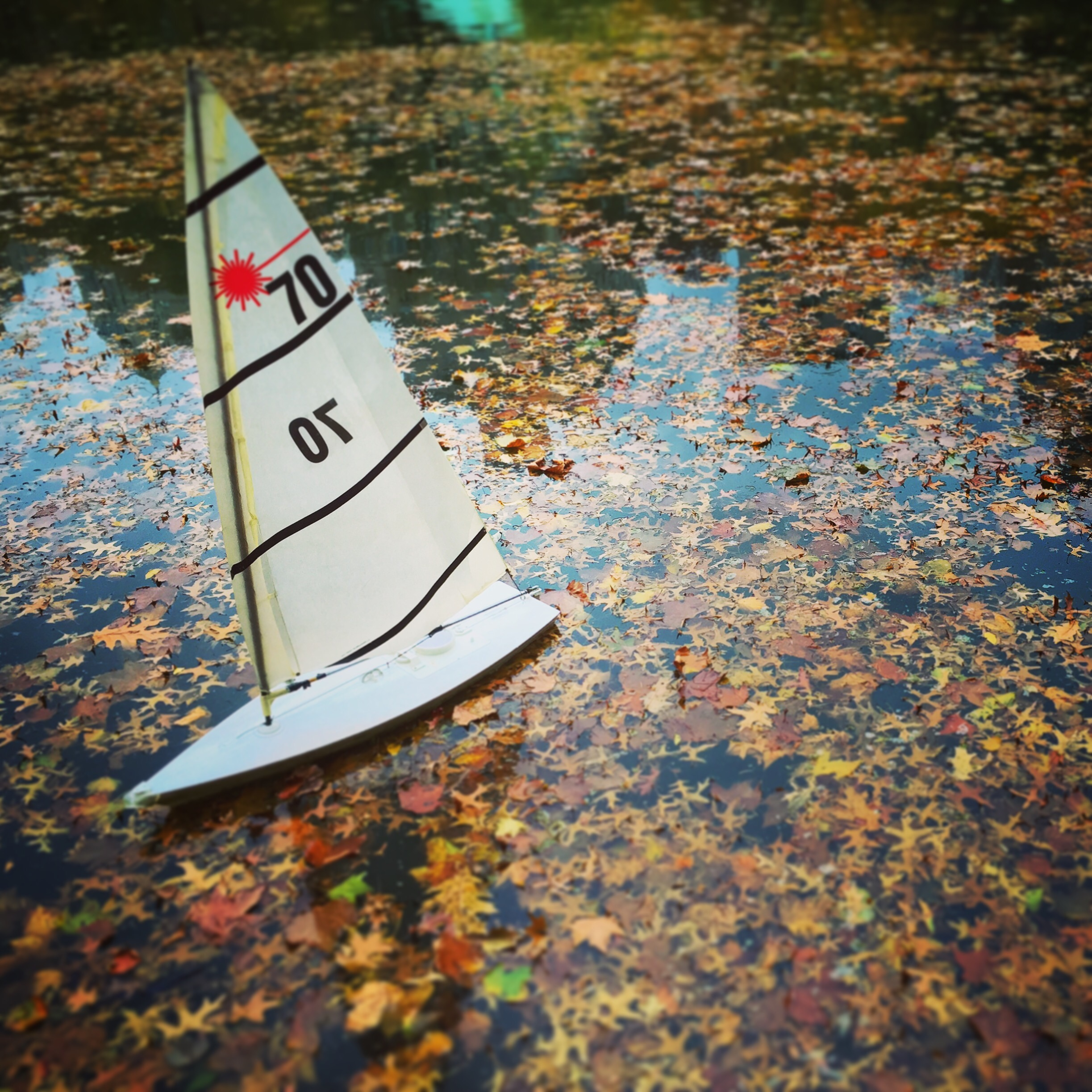 New York Art Director, Jessica Haas captures Central Park's Sailboat Pond reflections